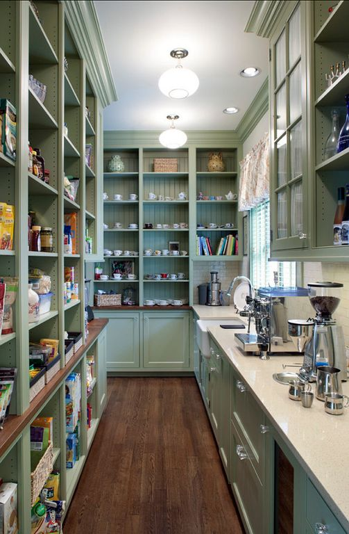 Country Pantry with Built-in bookshelf, Hardwood floors, Crown molding, Standard height, can lights, flush light, Paint 1