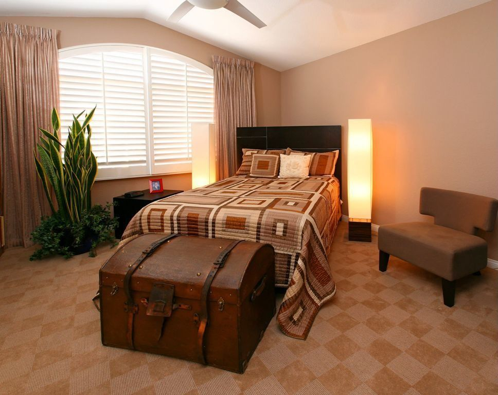 Contemporary Guest Bedroom with Standard height, Ceiling fan, Carpet