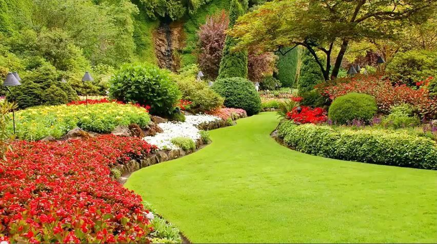 Traditional Landscape/Yard with Manicured lawn, Pathway, Mature landscaping