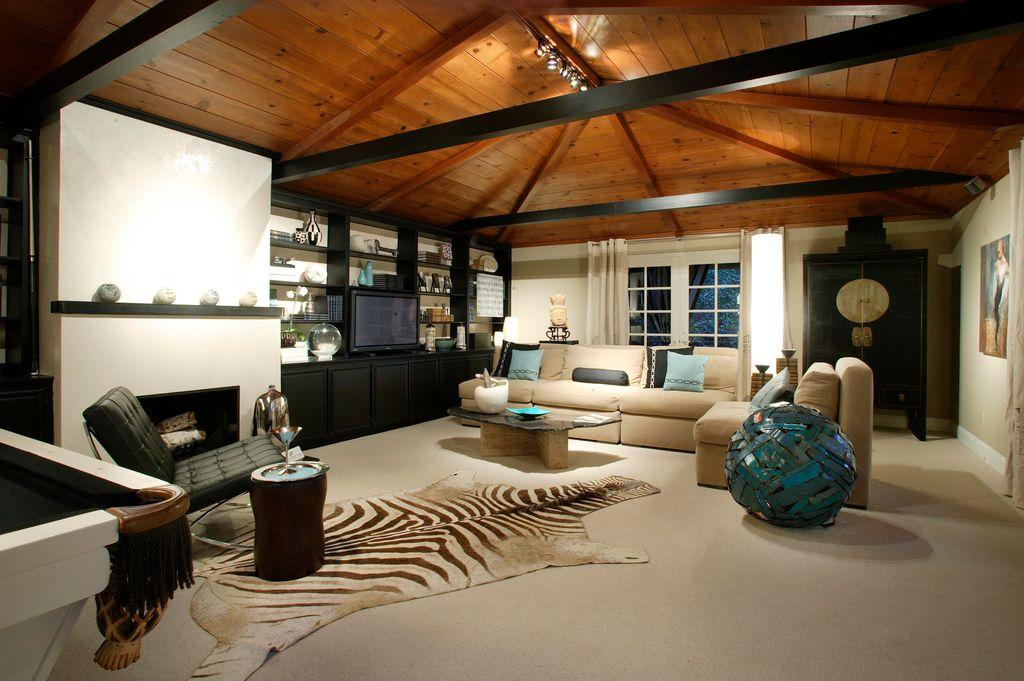 Eclectic Living Room with Wildon Home Resort Brown Zebra Shaped Outdoor Area Rug, can lights, Fireplace, Cement fireplace