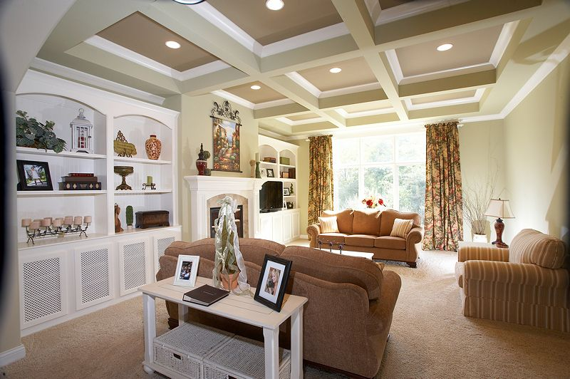 Traditional Living Room with Built-in bookshelf, Standard height, Box ceiling, can lights, Carpet, Casement, stone fireplace