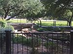 1000 Westbank Dr # A200, West Lake Hills, TX