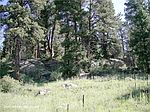 12285 Us Highway 285, Conifer, CO