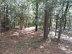 305 Herring Dr, Southport, NC