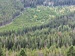 0 Rankin Estate Mining Claim, Other-see Remarks, MT