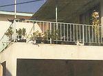 806 E Hyde Park Blvd, Inglewood, CA