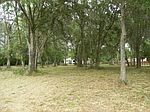 4438 Deerhound Dr, Land O Lakes, FL