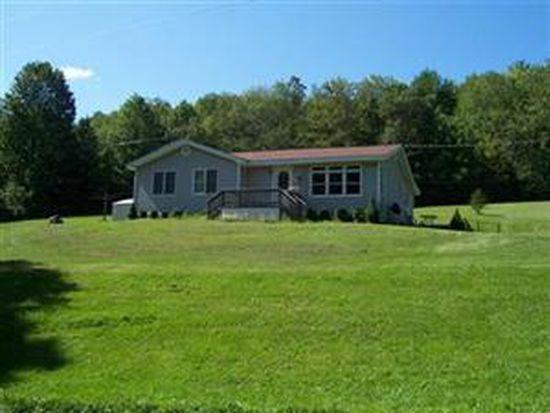 111 Webb Hill Rd, Davenport, NY 13750