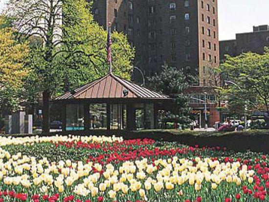 1705 Purdy St APT 1G, Bronx, NY 10462