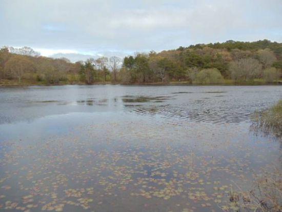 57 Duarte Pond Rd, Vineyard Haven, MA 02568