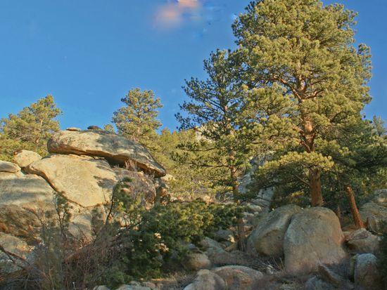 1435 Sierra Sage Ln, Estes Park, CO 80517