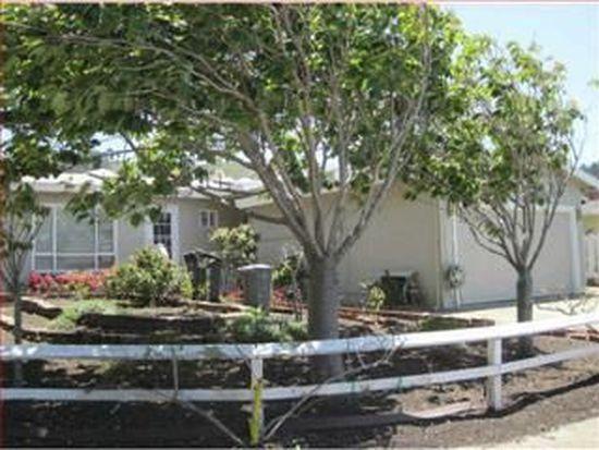 203 Pinehaven Way, Pacifica, CA 94044