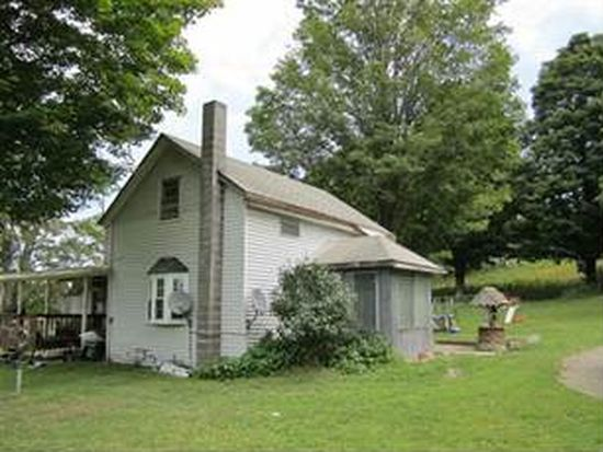 113 Wheat Rd, Mount Vision, NY 13810