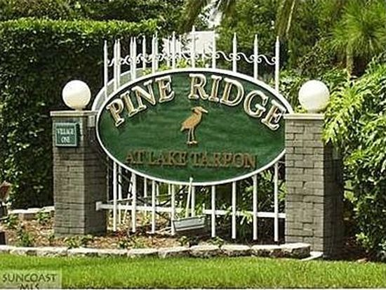1179 Pine Ridge Cir W APT A2, Tarpon Springs, FL 34688