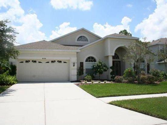 8139 Brinegar Cir, Tampa, FL 33647