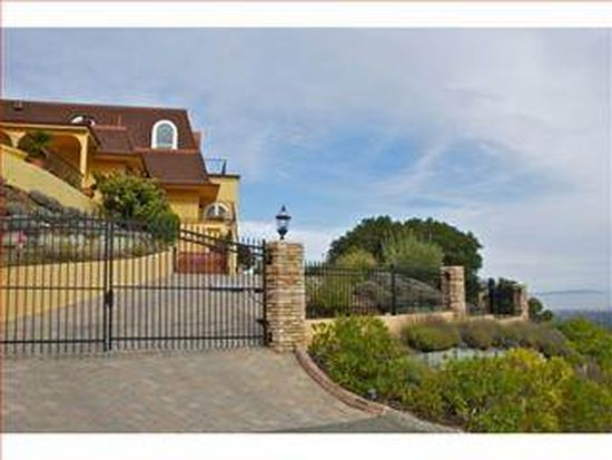 24877 Olive Tree Ln, Los Altos Hills, CA 94024