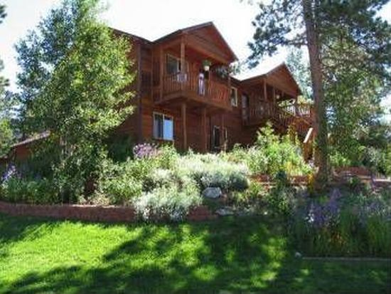 310 Panther Ct, Woodland Park, CO 80863