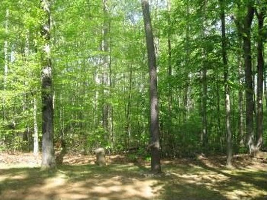 10563 Hidden Lake Ln, Rixeyville, VA 22737