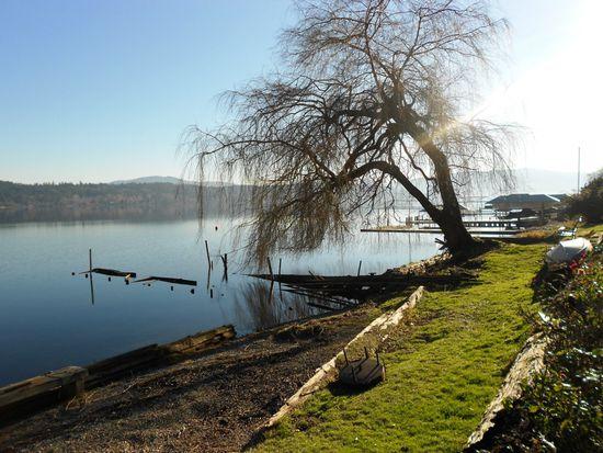 1630 W Lake Sammamish Pkwy NE, Bellevue, WA 98008