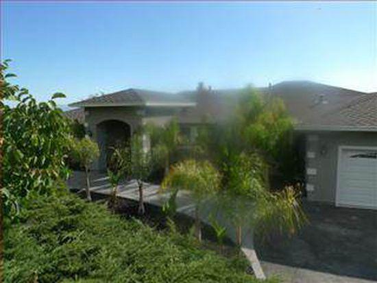 15390 Skyview Ter, San Jose, CA 95132