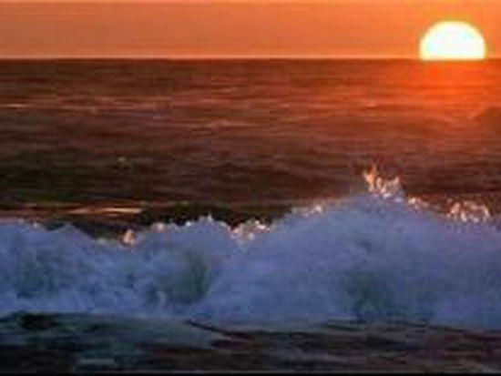 88 Sidra Cv, Newport Coast, CA 92657