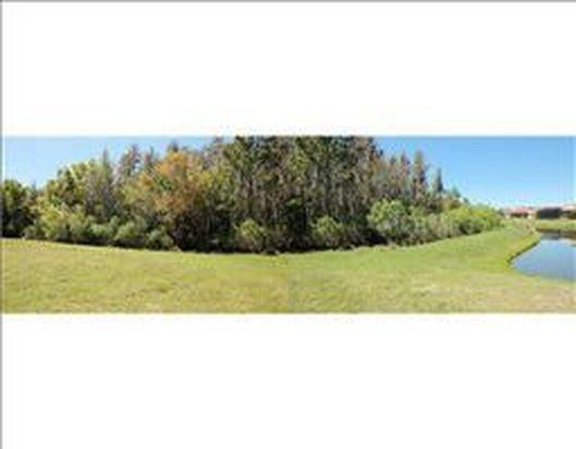 20004 Pergola Bend Ln, Tampa, FL 33647