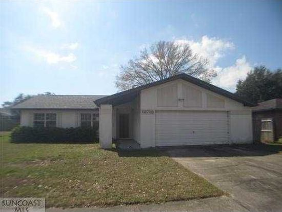 13715 Country Court Dr, Tampa, FL 33625