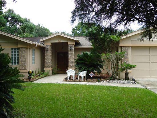 13718 Wilkes Dr, Tampa, FL 33618