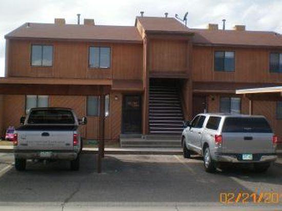 1102 E Carolina Ave APT 3, Fruita, CO 81521