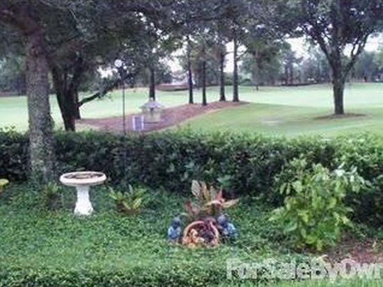 11207 Camden Park Dr, Windermere, FL 34786
