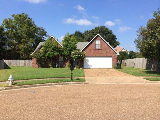 3075 Amber Rebecca Cv, Memphis, TN 38133