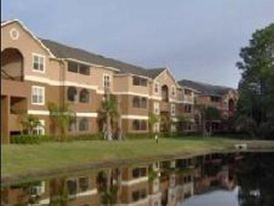 16200 Enclave Village Dr, Tampa, FL 33647