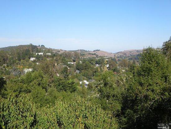 12 Madrone Park Cir, Mill Valley, CA 94941