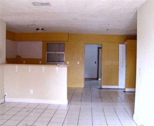 1724 Julian Lane Dr, Tampa, FL 33619