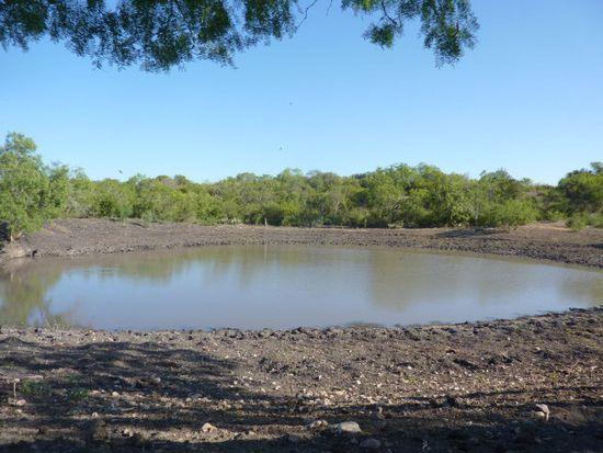 Youngsford Rd, New Braunfels, TX 78130
