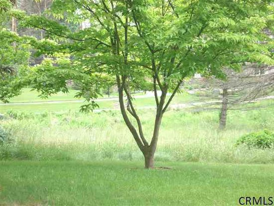 26 Frenchs Mill Rd, Altamont, NY 12009