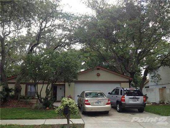 14717 Tall Tree Dr, Lutz, FL 33559