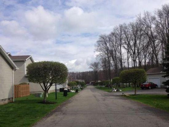 3217 Pheasant Run Rd UNIT A, Cortland, OH 44410