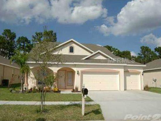12814 Cattail Shore Ln, Riverview, FL 33579