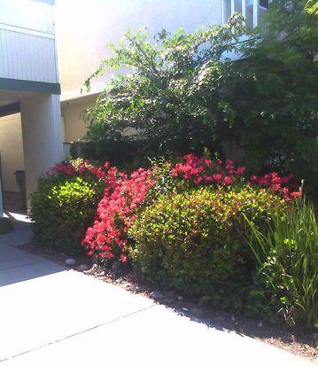 3542 Mount Davidson Ct, San Jose, CA 95124