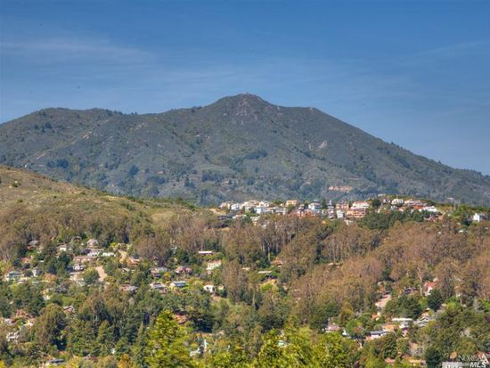 417 Viewpark Ct, Mill Valley, CA 94941