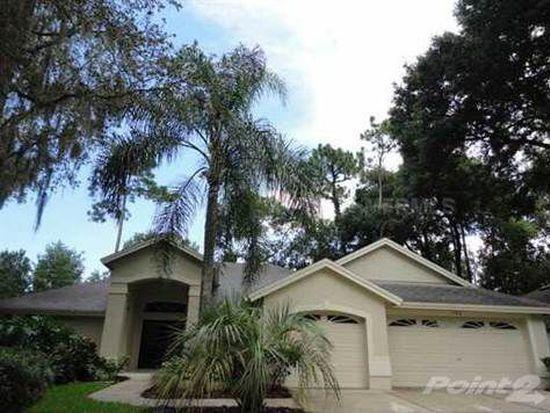 702 Stratfield Dr, Lutz, FL 33549