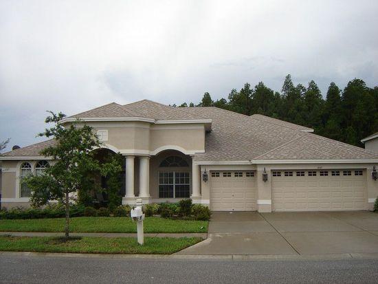 1447 Salmonberry St, Wesley Chapel, FL 33543
