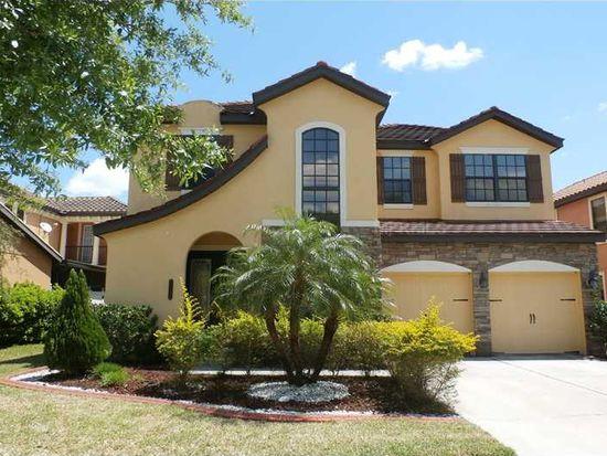 20343 Chestnut Grove Dr, Tampa, FL 33647
