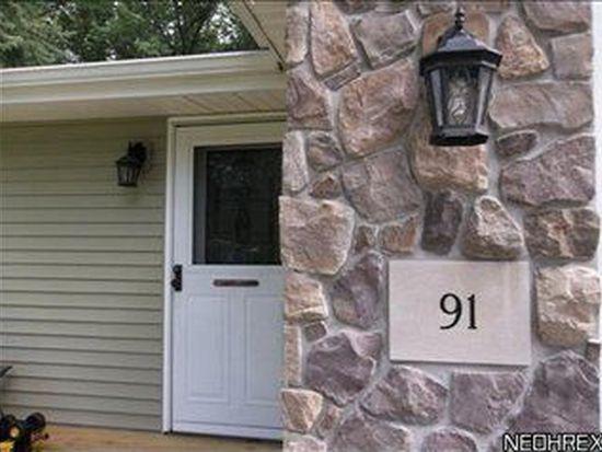 91 Bristol Ave, Painesville, OH 44077