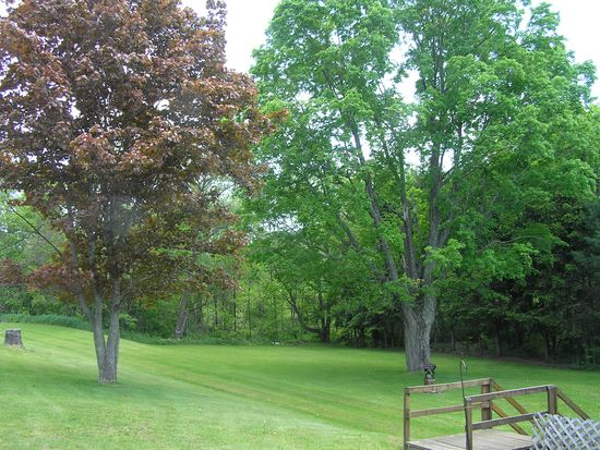 9492 State Hwy # 206, Tompkins, NY 13856