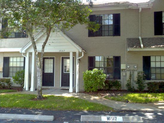 16517 Lake Brigadoon Cir, Tampa, FL 33618