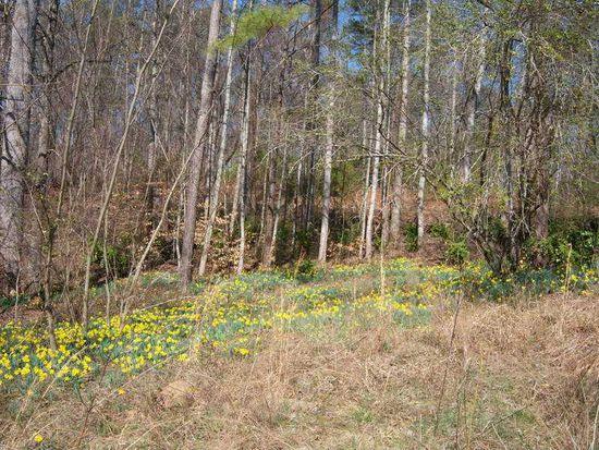 100 Sweetwater Creek Dr, Canton, GA 30114