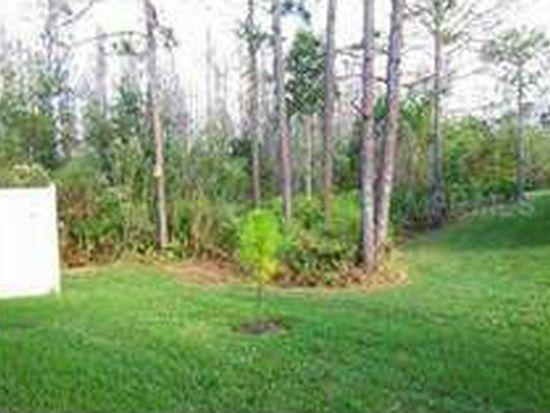 8173 Stone View Dr, Tampa, FL 33647