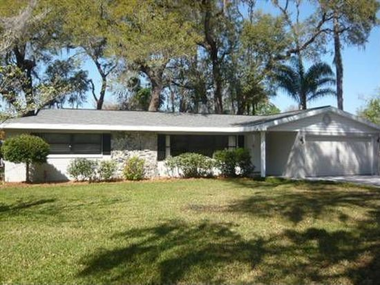 315 W Oak Hill Rd, Mount Dora, FL 32757